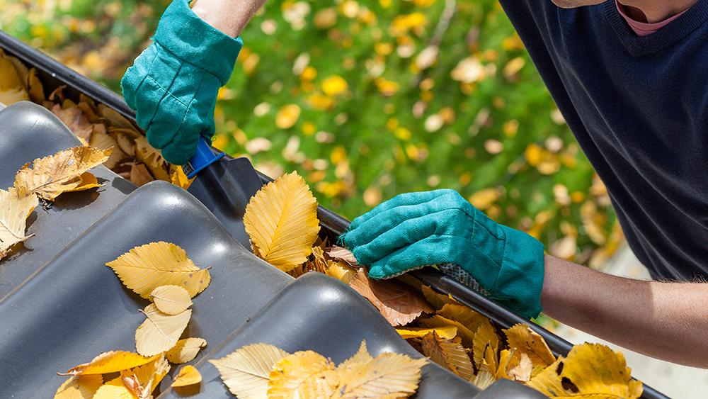 Comment préparer sa maison à l'automne ?